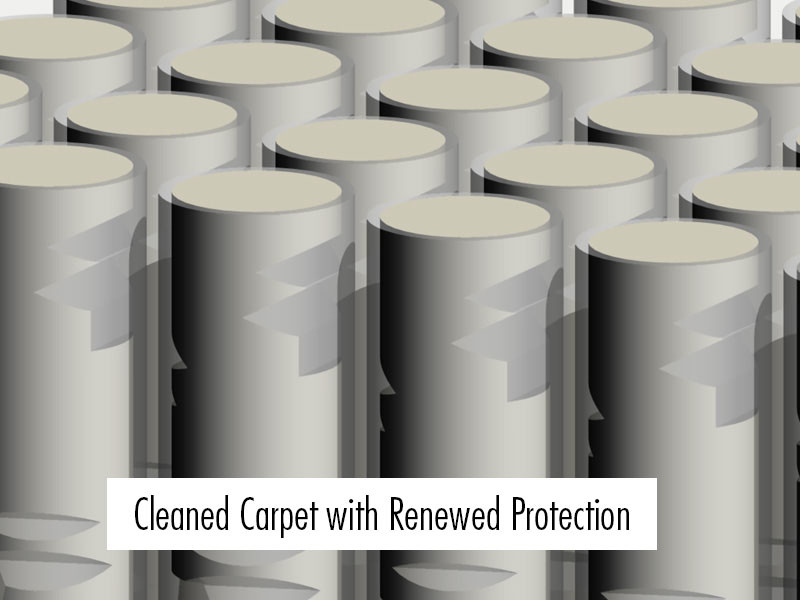 Benefits of carpet cleaning: 3D Render image of clean and protected carpet